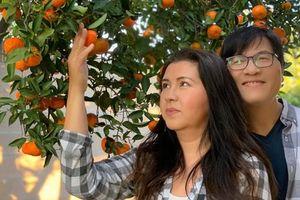 Cận cảnh khu vườn đầy hoa trái của vợ chồng Phương Thảo - Ngọc Lễ ở Mỹ