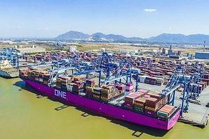 Cảng TCIT liên tục phá kỷ lục