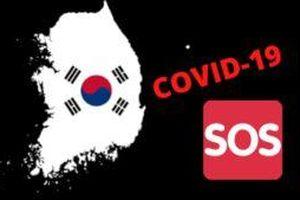 Covid-19: Hàn Quốc ghi nhận thêm 115 ca nhiễm mới, chủ yếu ở Daegu trong chiều 26/2