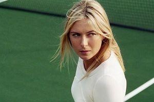 Những cột mốc đáng nhớ trong sự nghiệp thi đấu của 'búp bê Nga' Maria Sharapova