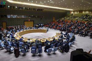 Việt Nam ủng hộ tuân thủ Hiệp ước không phổ biến vũ khí hạt nhân