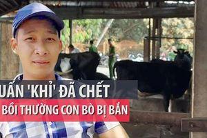 Pháp lý chuyện chủ bò đòi Tuấn 'khỉ' bồi thường 40 triệu đồng