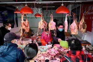 Thiếu gia cầm vì dịch Covid-19, Trung Quốc nhập khẩu gà từ Mỹ