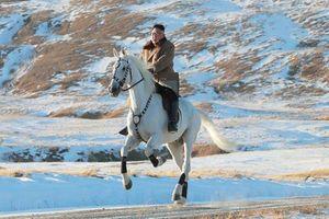 Ông Kim Jong Un cưỡi ngựa cực đẹp giá siêu khủng