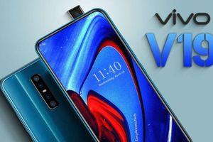 Vivo V19 - Tăng sức hút cho phân khúc tầm trung