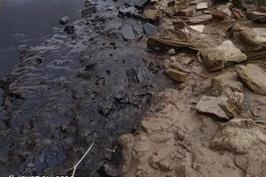 Vệt dầu thải đen kịt xuất hiện bên bờ sông Lam khiến người dân hoang mang