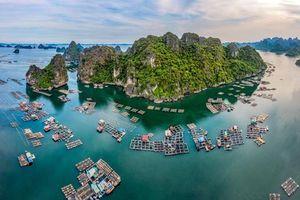 Vẻ đẹp vịnh Hạ Long - kỳ quan Việt nổi tiếng thế giới
