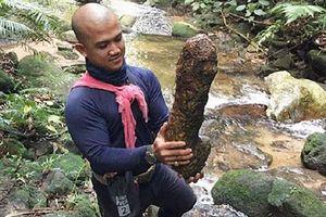 Tìm thấy ngôi đền bị mất trong rừng rậm Thái Lan