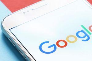 20 câu hỏi 'ngốc nghếch' khó tin hàng nghìn người tìm kiếm trên Google mỗi tháng
