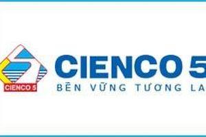 SCIC sẽ thoái vốn hơn 175 tỷ đồng tại CIENCO5