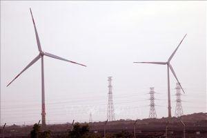 Nhà máy điện gió Bạc Liêu cán mốc sản lượng 1 tỷ KWh điện sạch