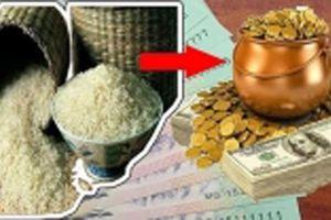 Hũ gạo là nơi hút tài thu lộc: Biết đặt đúng chỗ này tụ lộc gấp trăm, cả năm no đủ