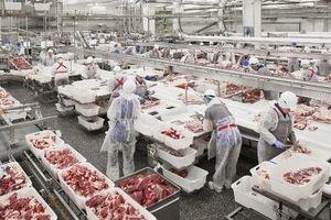 Tạo điều kiện để thịt lợn Nga vào thị trường Việt Nam
