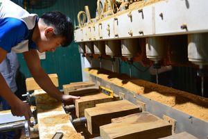 Ngành gỗ nguy cơ mất thị trường vì dịch Covid-19