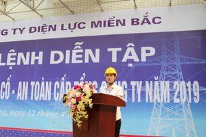 Nữ CEO duy nhất của ngành điện Việt Nam