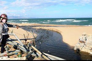 Nước thải từ nhiều trại tôm lớn ồ ạt xả thẳng ra biển Ninh Thuận