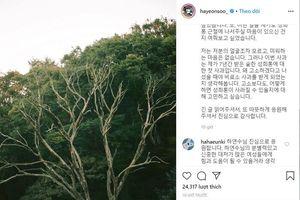 Diễn viên Ha Yeon Soo bị quấy rối tình dục!