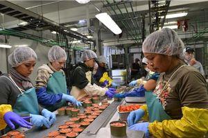 Thịt đóng hộp không chất bảo quản được sản xuất thế nào?