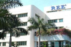 Trình phương án tái cấu trúc theo mô hình holdings, REE dự kiến cổ tức năm 2020 tối thiểu 16%