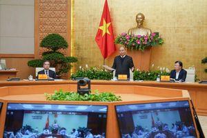Thủ tướng: Phải 'chốt' cứng diện tích trồng lúa