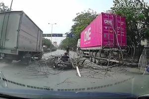 Kinh hãi cảnh cây bên đường bất ngờ bật gốc, quật ngã hai người đi xe máy