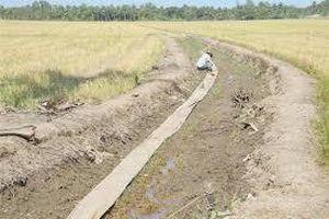 Chủ động ứng phó với hạn hán, xâm nhập mặn đến hết mùa khô