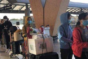 Dịch Covid-19: ĐSQ Việt Nam tại Philippines 'nhập cuộc' đưa công dân Việt Nam có nguyện vọng về nước