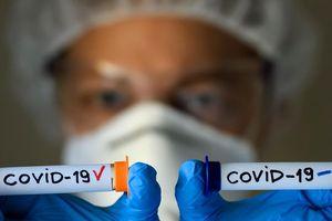 Mỹ: Hơn 68.000 ca mắc COVID-19