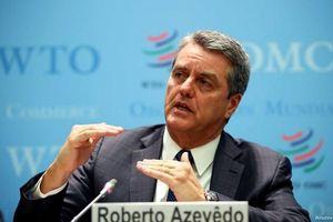 WTO: Suy thoái do COVID-19 sẽ nghiêm trọng hơn cuộc khủng hoảng 2008