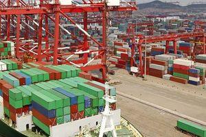 WTO: Thương mại lao dốc vì đại dịch Covid-19