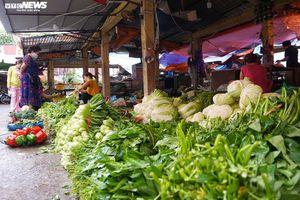 Ngày đầu Hà Nội tạm đóng cửa hàng dịch vụ không thiết yếu: Dồi dào hàng hóa ở chợ
