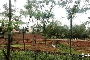 Đất Thạch Thất 'sốt' giá: 'Cò' đất tung chiêu, giao dịch ngầm nảy nở