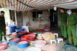 Hà Tĩnh: Phát hiện cơ sở chế biến tôm nõn từ tôm chết đã bốc mùi hôi thối