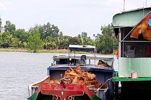 Thành phố Cần Thơ: Phát hiện 7 sà lan khai thác khoáng sản trái phép trên sông Hậu