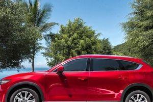 Chiếc ô tô 7 chỗ đẹp long lanh này đang giảm mạnh 100 triệu đồng/chiếc tại Việt Nam