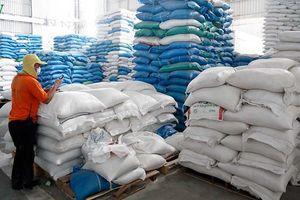 Campuchia tạm dừng xuất khẩu thóc, gạo do dịch Covid-19