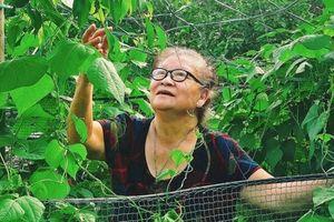 Bà 83 tuổi viết thư, tặng trứng gà cảm ơn chiến sĩ nơi cháu cách ly