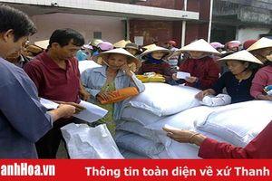 Hỗ trợ gạo cho các hộ gia đình tự nguyện nhận trồng, bảo vệ rừng