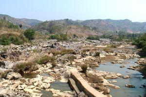 Hai 'ông thủy điện' ở Kon Tum thi nhau tích nước: Sông cạn, cây trồng chết khô, người dân điêu đứng