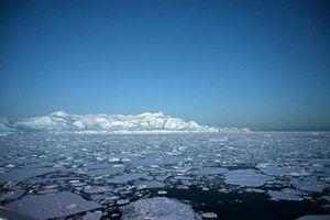 Nam Cực nóng kỷ lục