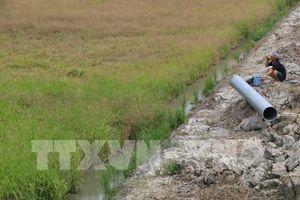 Trung Bộ và Tây Nguyên: Nguy cơ tiếp tục hạn hán, thiếu hụt nguồn nước và xâm nhập mặn