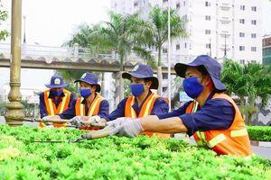 Đấu thầu dịch vụ công ích tại TP. Biên Hòa (Đồng Nai): Sonadezi lại được xướng tên