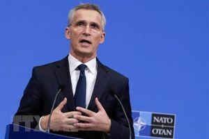 Lập Hội đồng chuyên gia, NATO muốn cải tổ