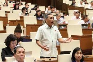 Dừng tổ chức Hội nghị đại biểu Quốc hội chuyên trách để chống Covid-19