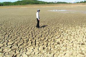 Khẩn cấp ứng phó hạn hán, thiếu nước ở miền Trung, Tây Nguyên