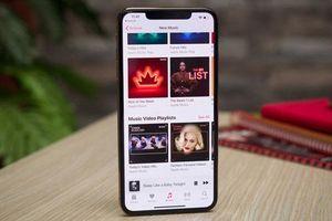 Apple Music hỗ trợ chia sẻ nhạc trên Story của Instagram?