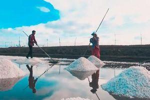 Đề nghị công nhận 'Nghề làm muối Bạc Liêu' là Di sản văn hóa phi vật thể quốc gia
