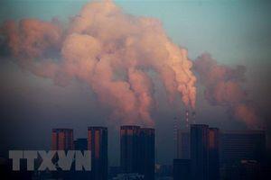 Lượng khí CO2 xuống mức thấp kỷ lục kể từ Chiến tranh Thế giới thứ 2
