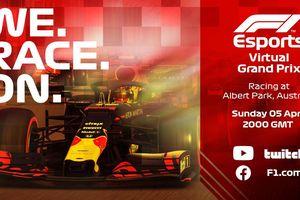 Chặng F1 Việt Nam được đua online vào đúng ngày 5-4