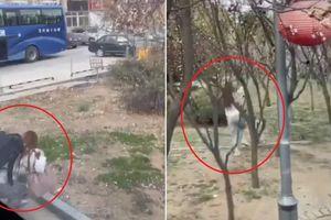 Cô gái bị bắt vì nhảy khỏi xe trốn cách ly